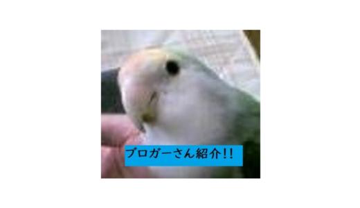 ブロガーさん紹介!/弐億貯男(@2okutameo)さん